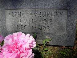 Alpha Amburgey