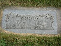 Ervin Trimbull Woods