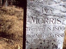 Ivy Morris