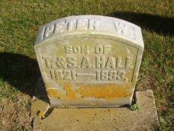Peter W Hall