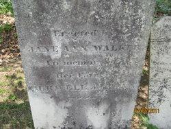 Jane Ann Walker