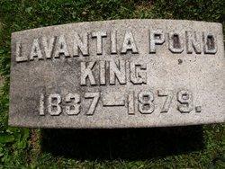 Lavantia <I>Pond</I> King