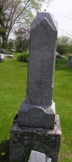 Jacob Fahnestock, Jr
