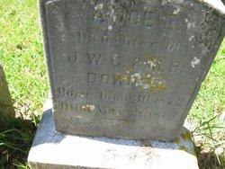 Alice C Downes