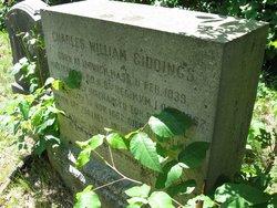 Charles William Giddings