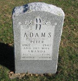 Peter Albert Adams