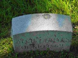 Alcie L Noyes
