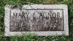 Mary E. Agnor