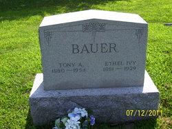 Tony A. Bauer