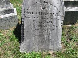 Amelia Hayes