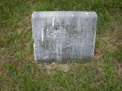 Hattie M.C. Cashner