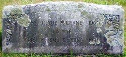 Pluema <I>Ewing</I> Crane
