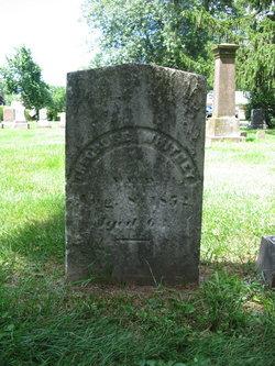 Theodore Whitney
