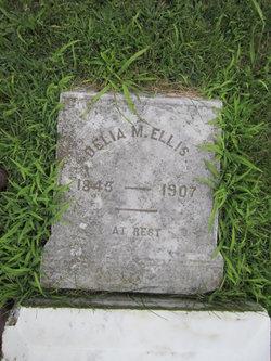 Delia M <I>Foran</I> Ellis