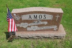Victor W Amos