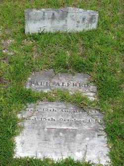 Paul Alfred Felder