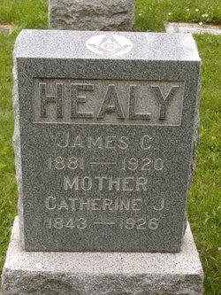 James Cornelius Healy