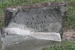 Sarah Ann <I>Hennen</I> Bosart