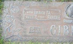 Bryan J. Gibbins