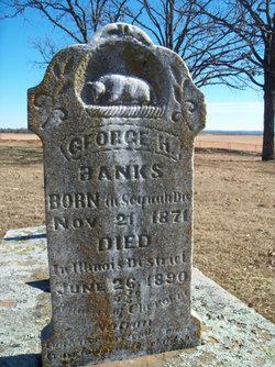 George H Banks