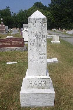 David Augustus Hahn, Sr