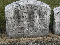 Elizabeth <I>Brown</I> Allam