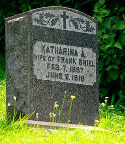 Katharina A. <I>Wippert</I> Briel