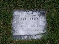 Merlin John Blood