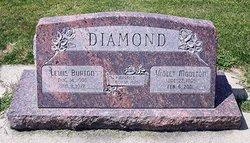 Lewis Burton Diamond