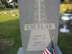 Mary L. Cieslak