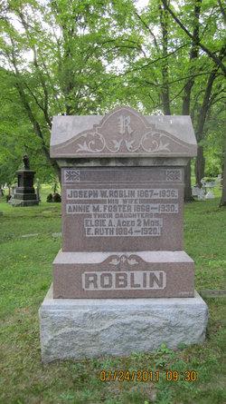 Joseph Wilde Roblin