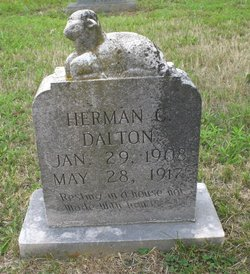 Herman C Dalton