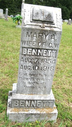 "Mary Ann ""Polly"" <I>Austin</I> Bennett"