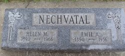 Emil A Nechvatal