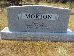 Louis Edwin Morton