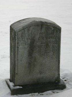 Mrs Catharine Rudolph <I>Brown</I> Eakins