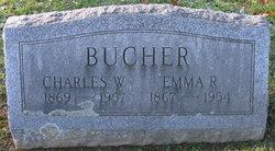 Charles W Bucher
