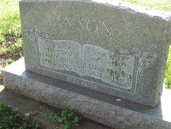 Gesina Behrends Anson