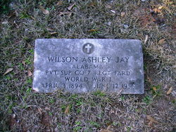 Wilson Ashley Jay