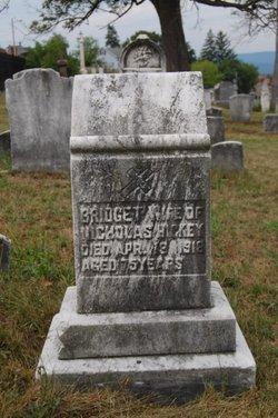 Mrs Bridget Hickey
