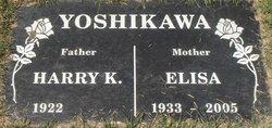 Harry K Yoshikawa