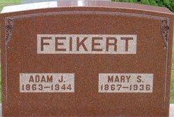 Adam J Feikert