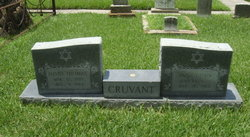 Anna <I>Rubin</I> Cruvant