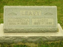 Elizabeth Anne <I>Miller</I> Leavy