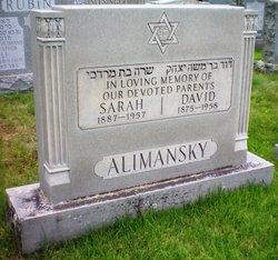 David Alimansky