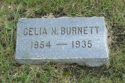 Celia N. Burnett