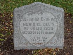Adelaida Cesena