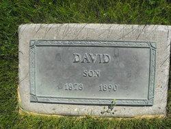 David Moroni Poulsen