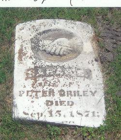 Sarah C. Briley