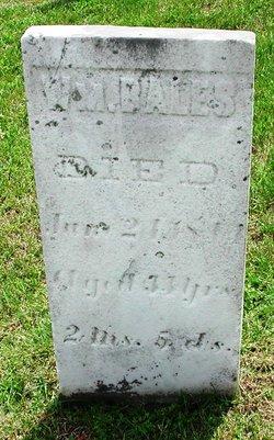 William M. Bales
